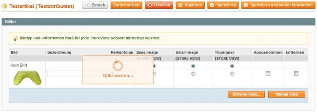 Warten-Magento-Backend-650x231